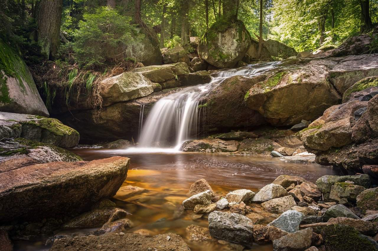 asmr ballade en forêt cascades et bruits de feuilles