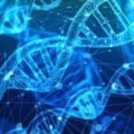 Activer nos 12 brins D'ADN pour développer nos capacités psychiques et redevenir souverain